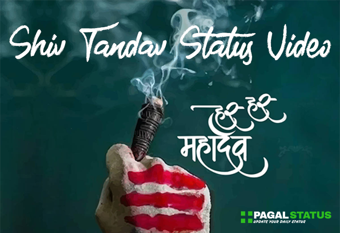 500+ Best Mahadev, Mahakal, Bholenath Whatsapp Status Videos Download