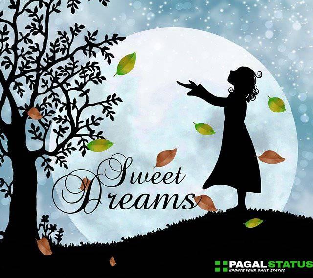 Good Night Whatsapp Status Video Download, Good Night Whatsapp Status in hindi Download