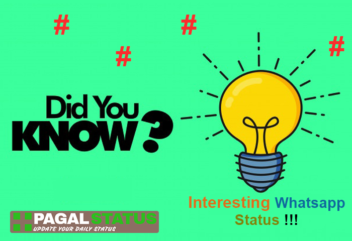 Did you know interesting facts whatsapp status, Whatsapp interesting status download