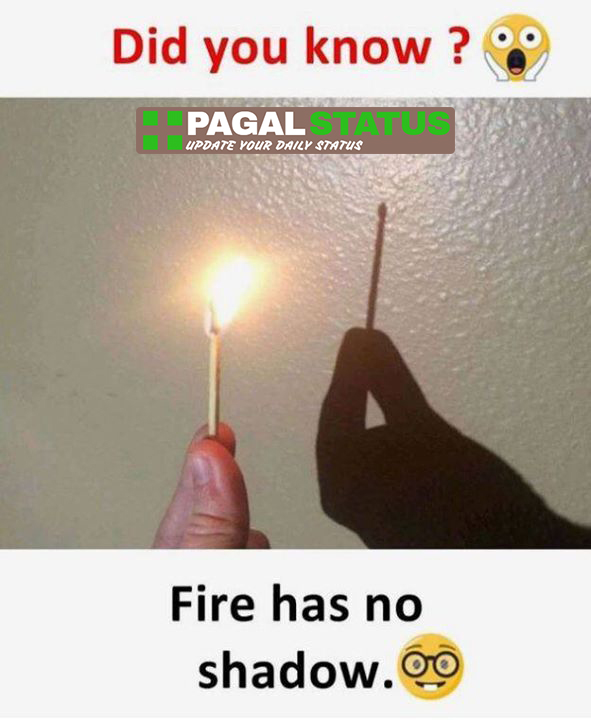 did you know? fire has no shadow,  Interesting Whatsapp Status