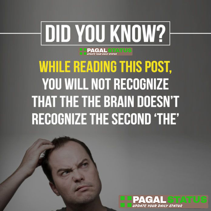 did you know? while reading this post, you will not recognize that the the brain doesn't recognize the second 'the',  Interesting Whatsapp Status