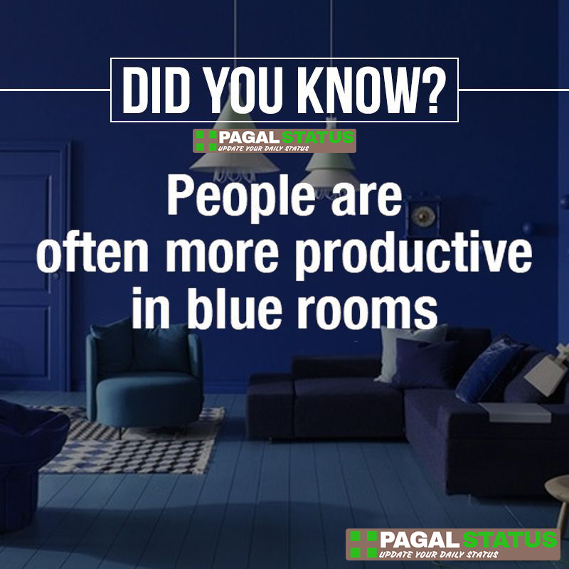 Did you know? people are often more productive in blue rooms,  Interesting Whatsapp Status