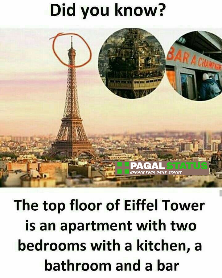 The top floor of Eiffel tower is an apartment with two bedrooms with a kitchen, a bathroom and a bar,  Interesting Whatsapp Status