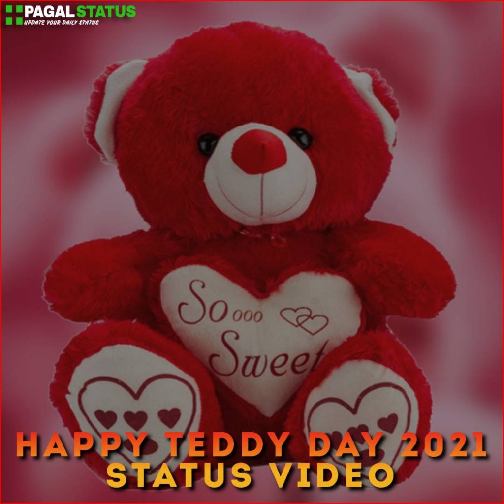 Happy Teddy Day 2021 Status Video Download