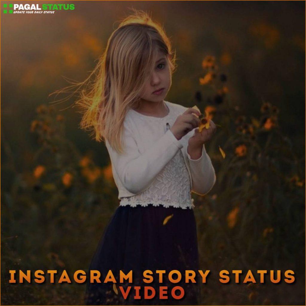 Instagram Story Status Video Download
