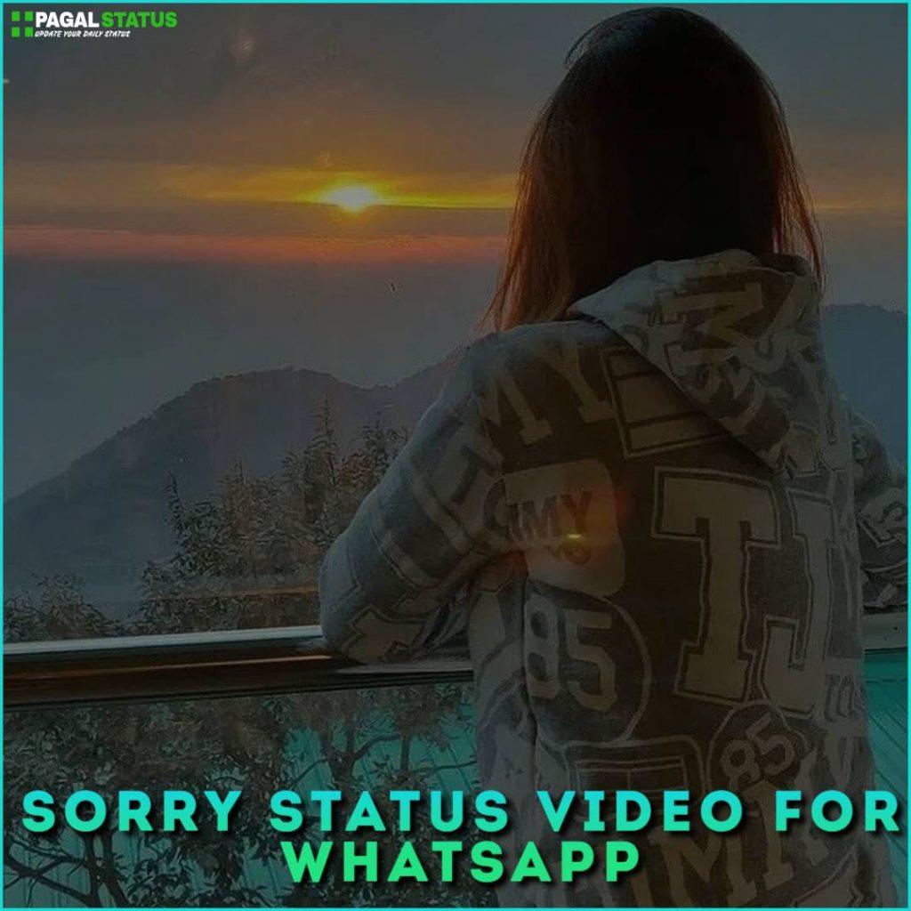 Sorry Status Video For Whatsapp