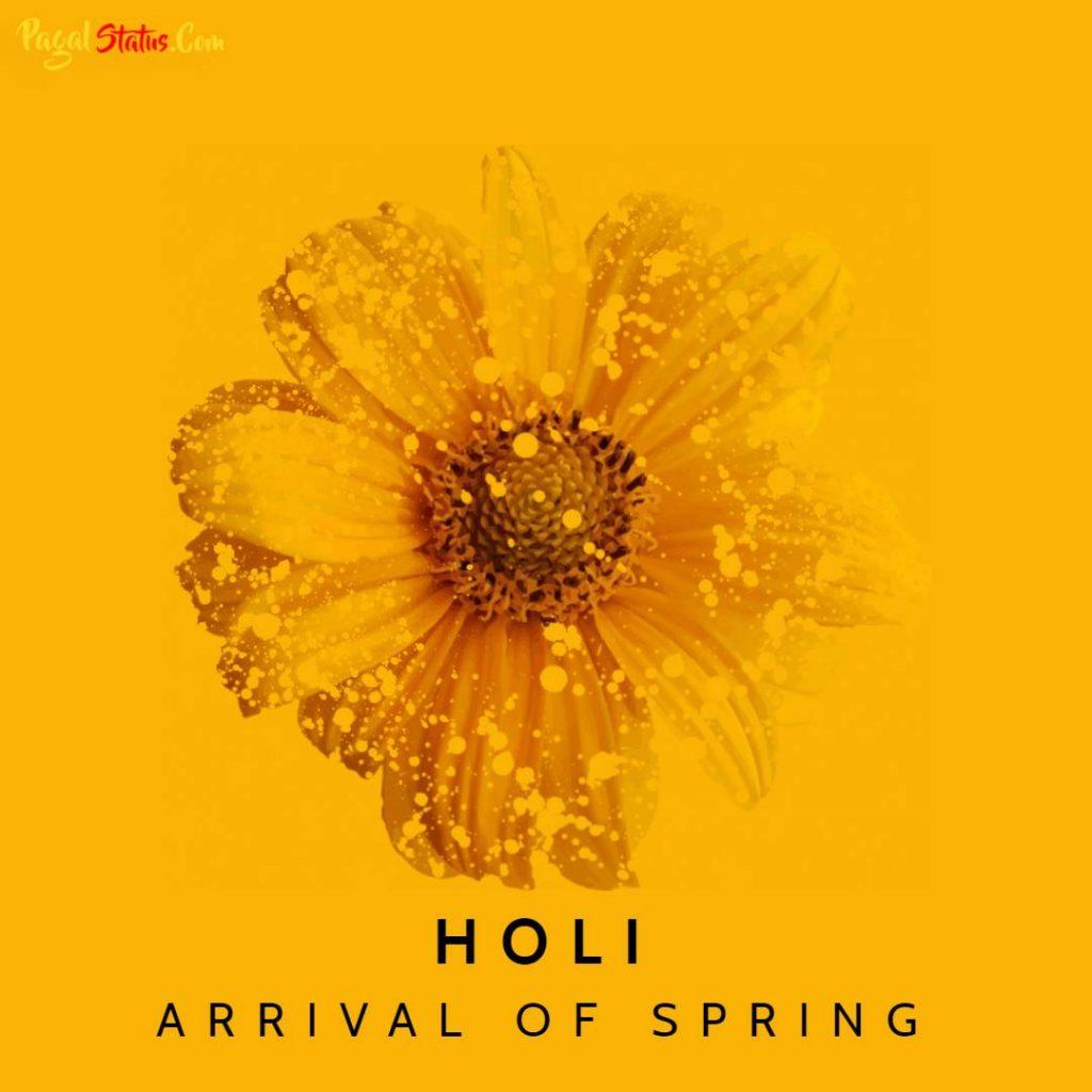 Happy Holi 2021 HD Images