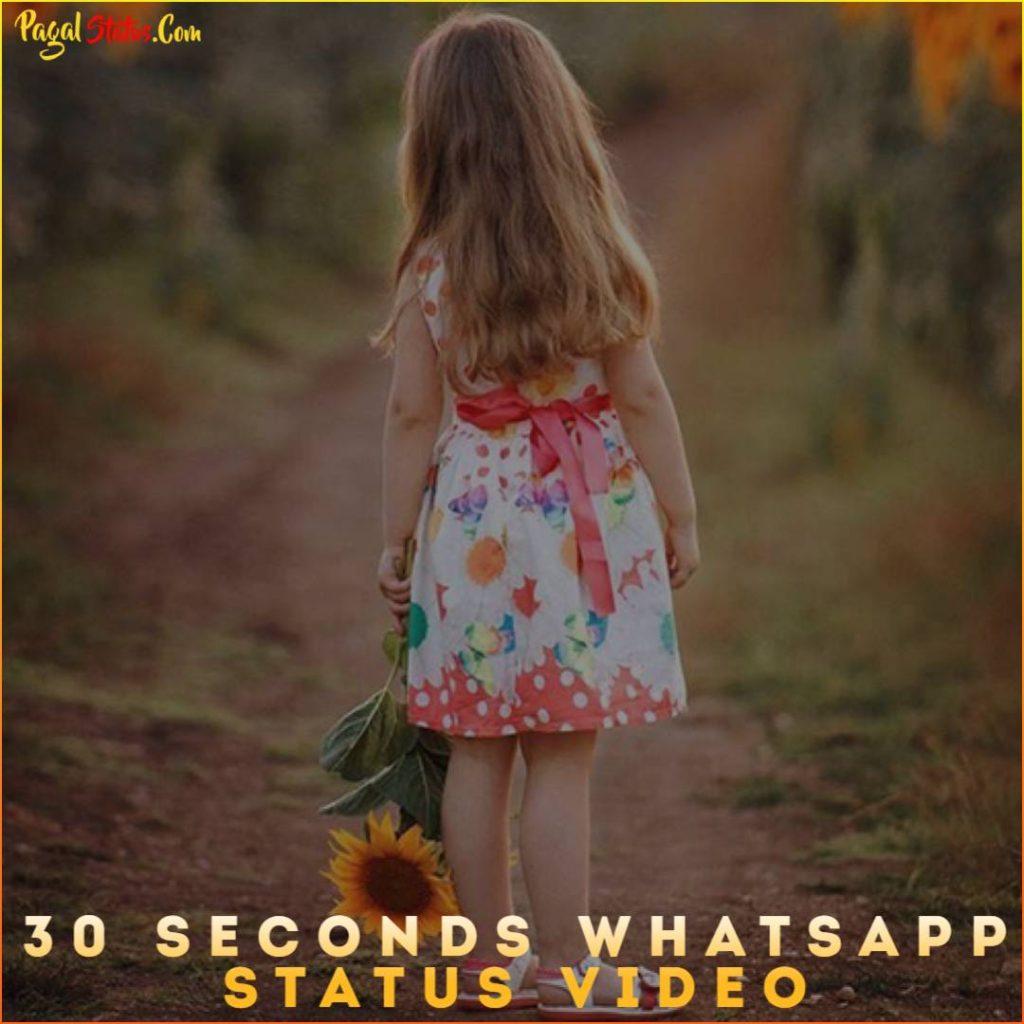 30 Seconds Whatsapp Status Video