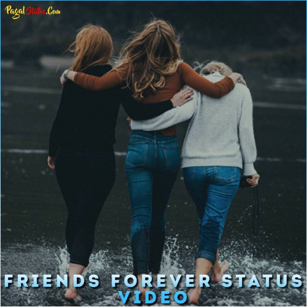 Status friendship and love Friendship And