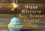 Happy Birthday Full Screen Status Video