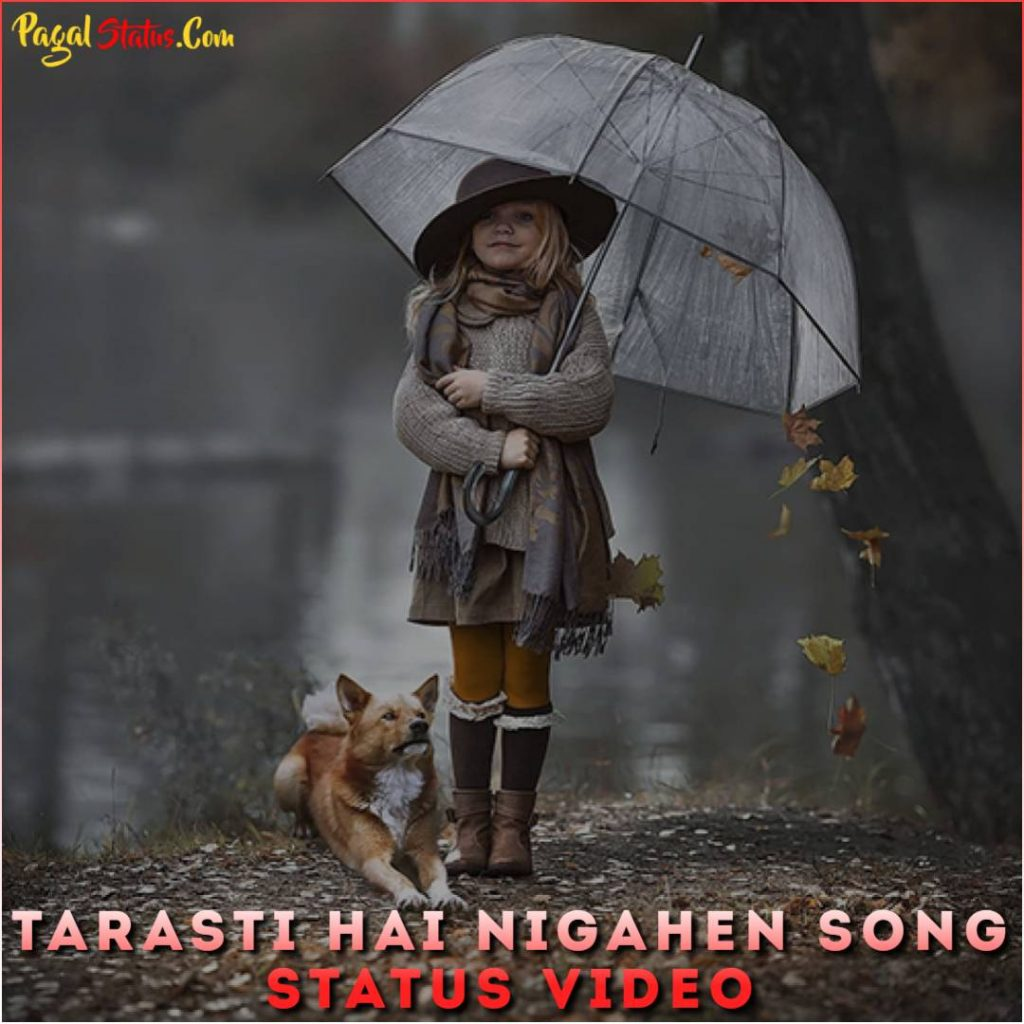 Tarasti Hai Nigahen Song Status Video
