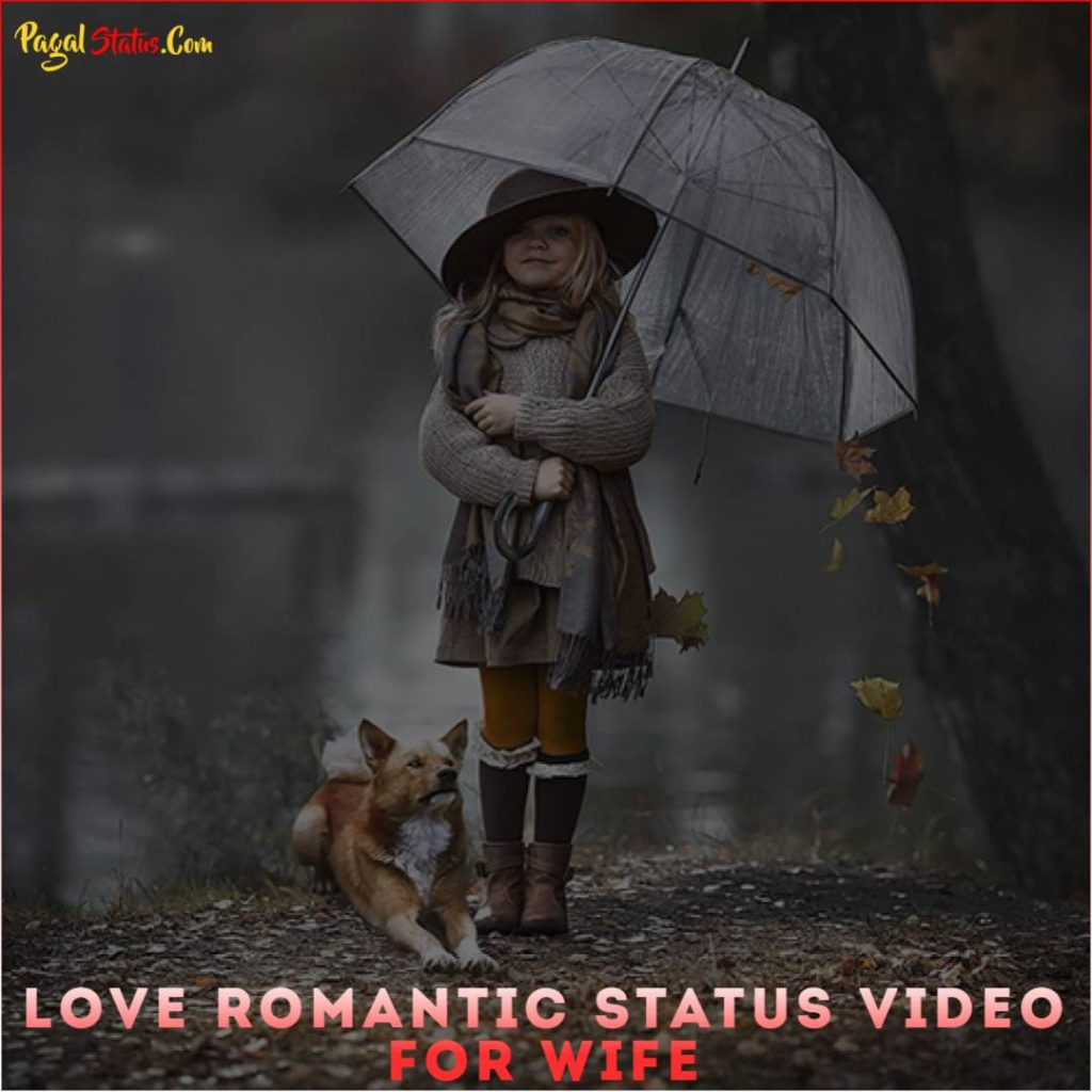 Love Romantic Status Video For Wife