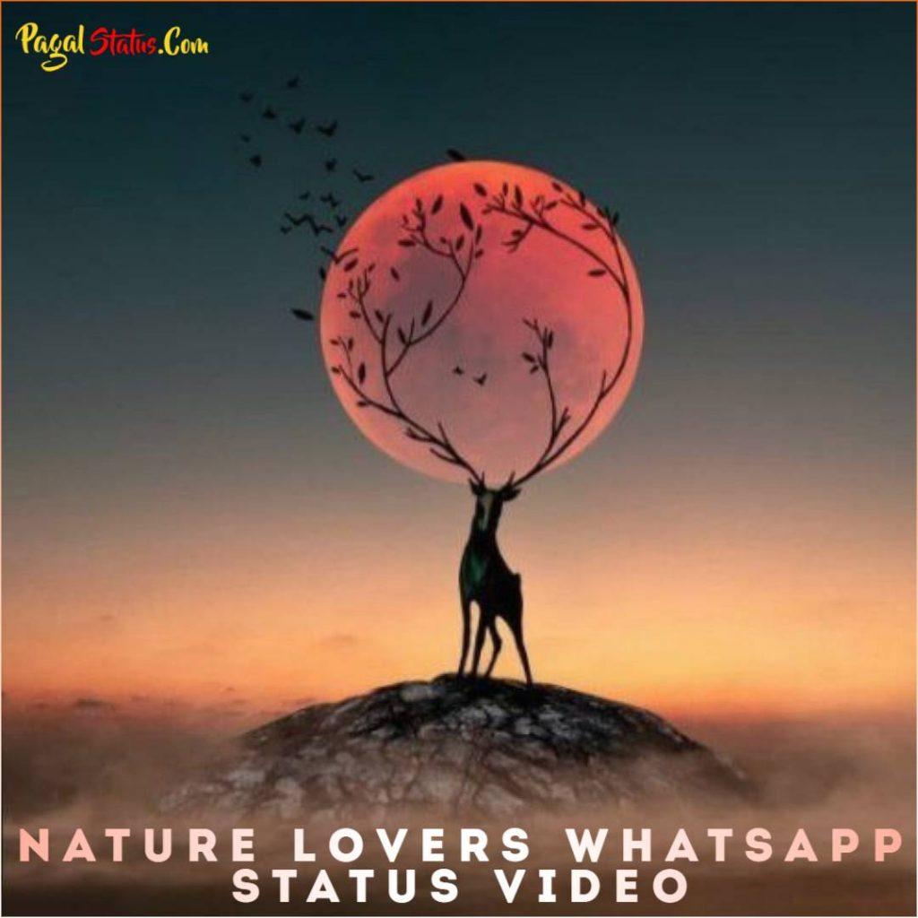 Nature Lovers Whatsapp Status Video