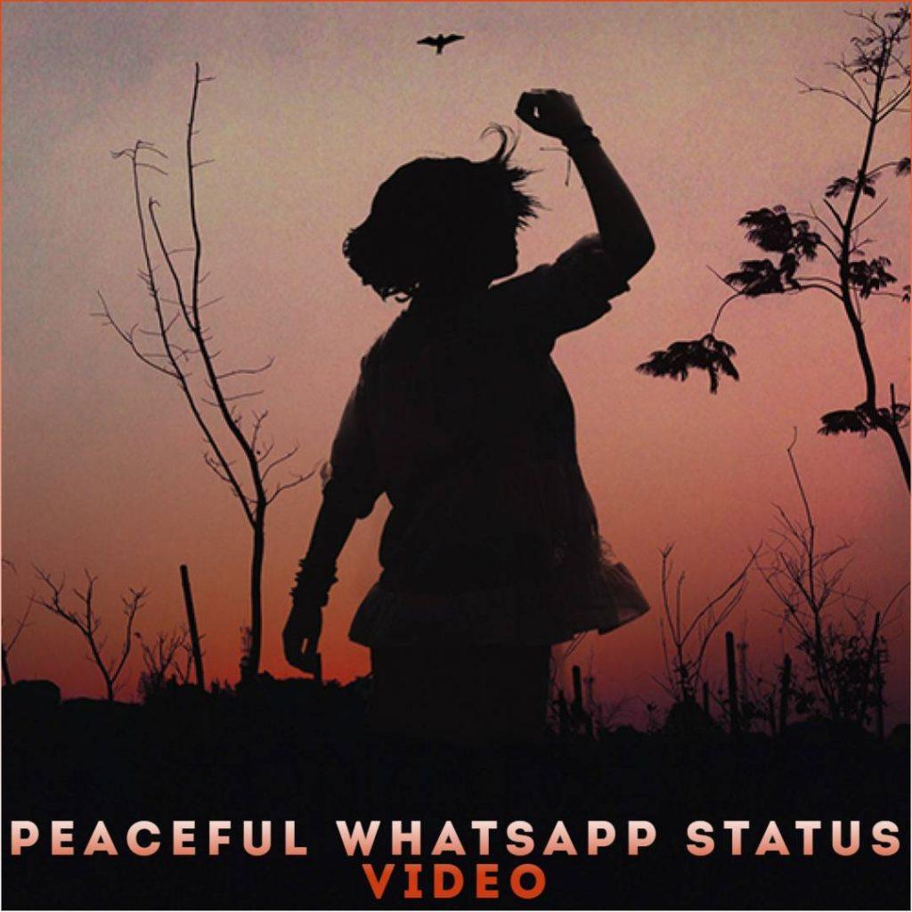Peaceful Whatsapp Status Video