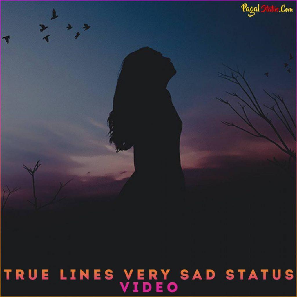 True Lines Very Sad Status Video
