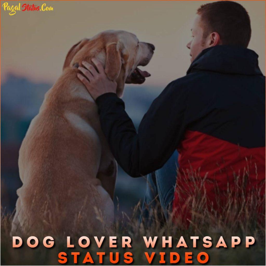 Dog Lover Whatsapp Status Video