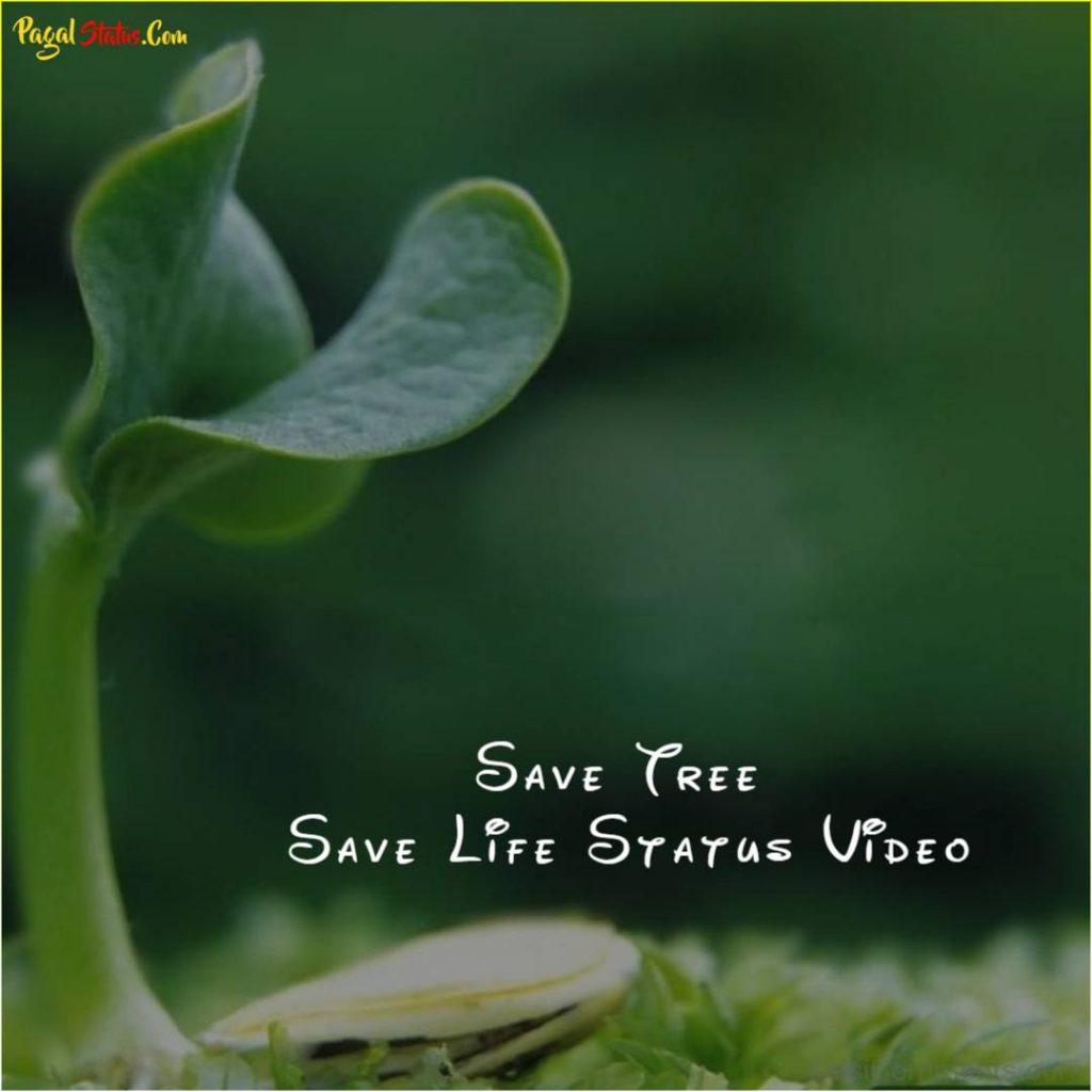 Save Tree Save Life Status Video