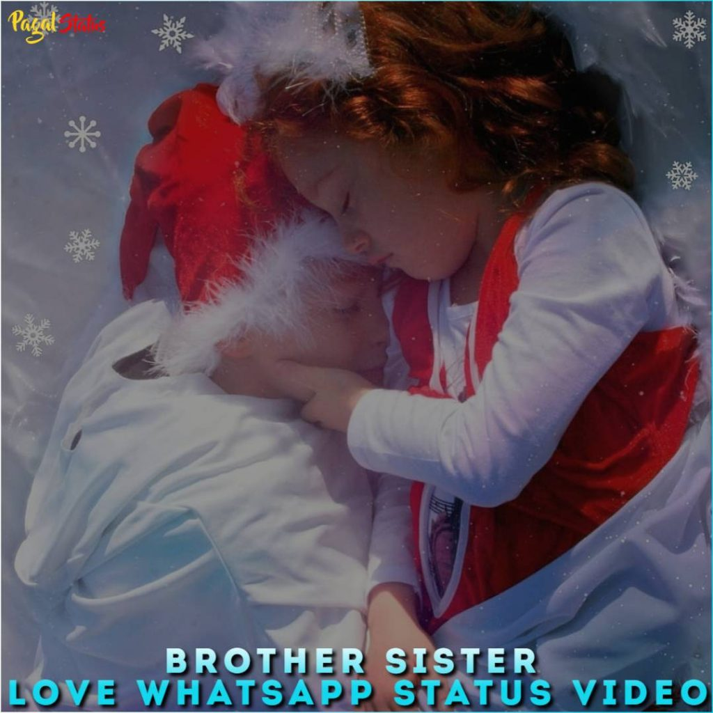Brother Sister Love Whatsapp Status Video